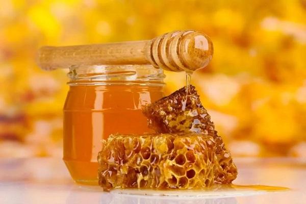 Салат из краснокочанной капусты с мёдом
