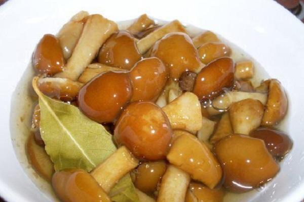 Салат с рыбой и грибами
